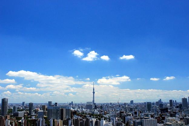 Photos: Straight To The Sky
