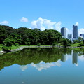 Symmetry Of TOKIO