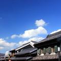 写真: 川越ブルー