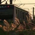 写真: 夕暮れ横浜ライン