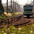 写真: 電車が来るよ♪