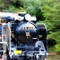 写真: 走れ!D51!