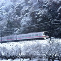 京王高尾冬景色