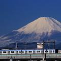 写真: 富士山電車~相鉄バージョン~