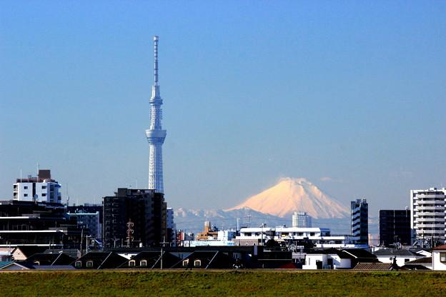 Photos: W 日本一