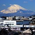 写真: 富士山電車~湘南モノレールバージョン~