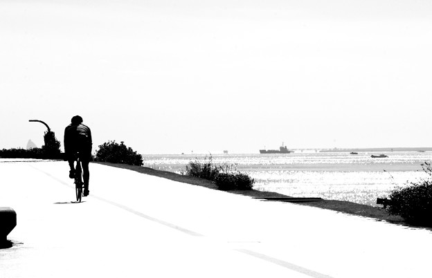 Seaside Ridder