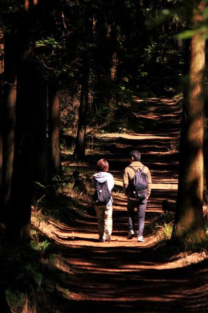 光と陰の小径~Natural Love~