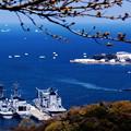 春の横須賀港