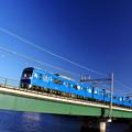 写真: ブルー×ブルー