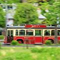 写真: 疾走!新緑バス
