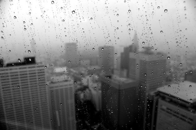 雨に煙る新宿摩天楼