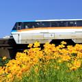 写真: お花見電車~TMRバージョン~