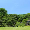 三渓グリーン
