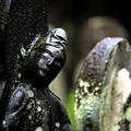 写真: 石仏雨情