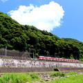 写真: 夏が来るo(^-^)o