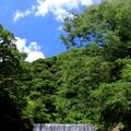 写真: 箱根ナイアガラ