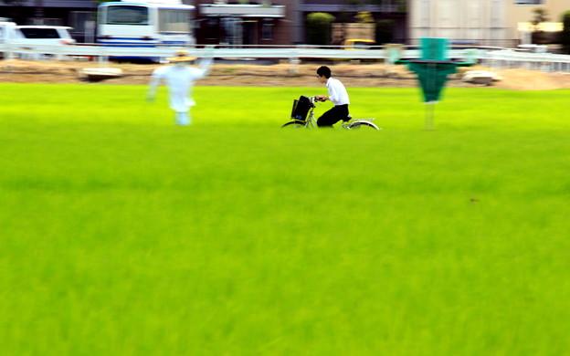 Photos: 走れ!川越少年!