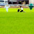写真: 走れ!川越少年!
