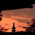 Photos: 夏の夕