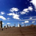 写真: 横浜砂丘