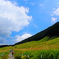 写真: 初秋の高原