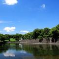 Photos: 桜田門ブルー