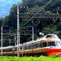 写真: 小田急旅情