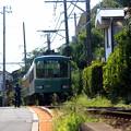 写真: 江ノ電寸景