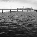 写真: 大河を渡って