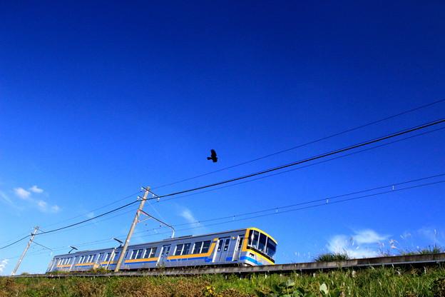 横浜のんびり鉄道