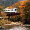 写真: 秋の秩父路