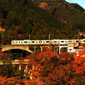 Photos: 紅葉電車~奥多摩線バージョン~