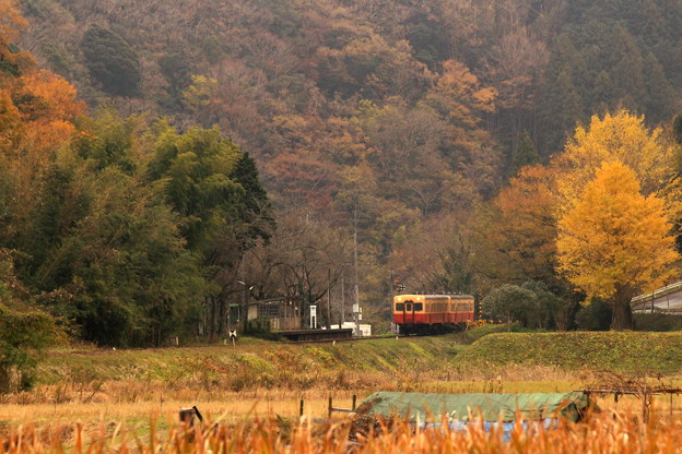 里山の小駅