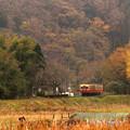 写真: 里山の小駅