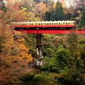 写真: 渓谷列車