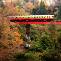 Photos: 渓谷列車