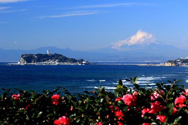 初冬の相州富士