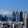 Photos: 摩天楼富士