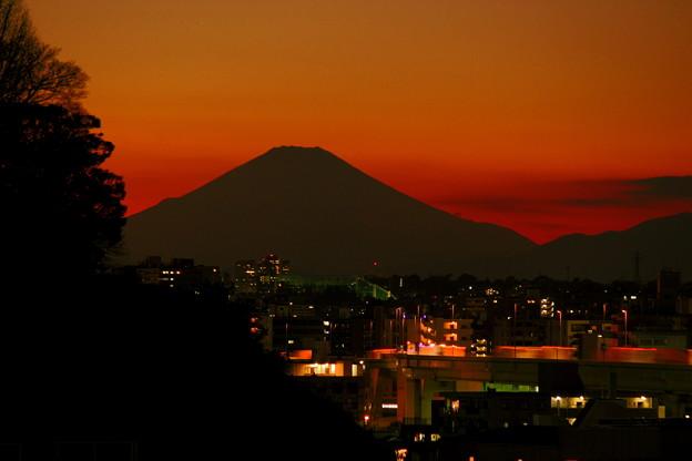 フェリス富士