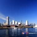写真: 師走のBlue Yokohama