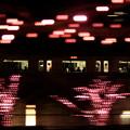 写真: Speed Of Light