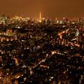 写真: 東京イルミネーション