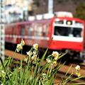 写真: 新春京急