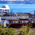 写真: 海と京急~Peninsula Train~