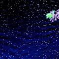 Sakura Stars