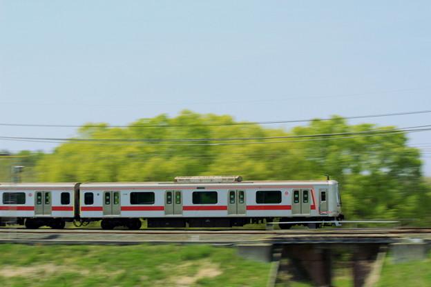 Toyoko In Green