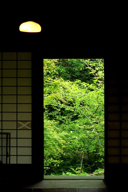 窓の向う側