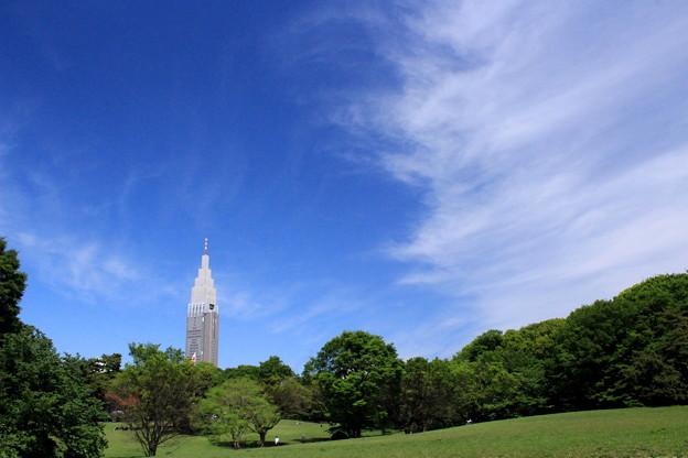 Tokyo Green Oasis
