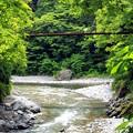 写真: 緑の渓谷